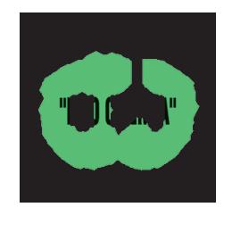 logo-pro3
